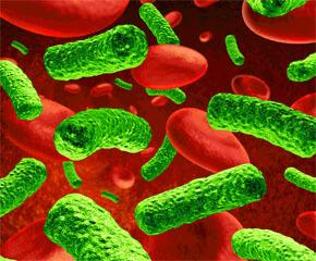 скрытые инфекции